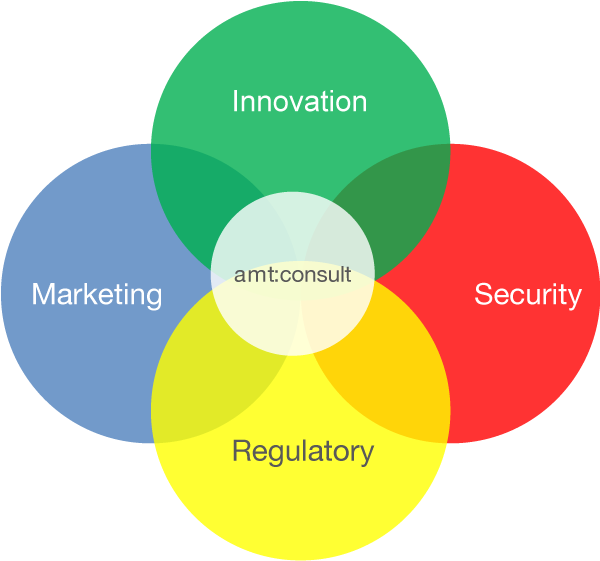 amt portfolio: Cyber-Security, Marketing, Innovation and Regulatory Affairs